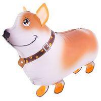 Chodzący balon foliowy pies - 59 x 40 cm - 1 szt. marki F f