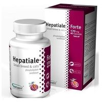 Hepatiale Forte małe psy i kot 40 kapsułek