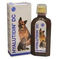 hyalutidin dc preparat chroniący stawy 125ml od producenta Animedica