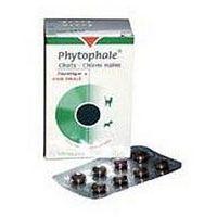 Phytophale Chats® Chiens nains 32tabl. Środek moczopędny dla kotów i małych psów