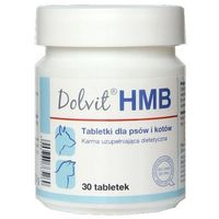 Dolvit hmb 90 tabletek marki Dolfos